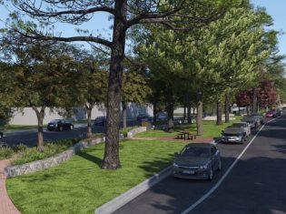 Mt Tamborine Streetscape
