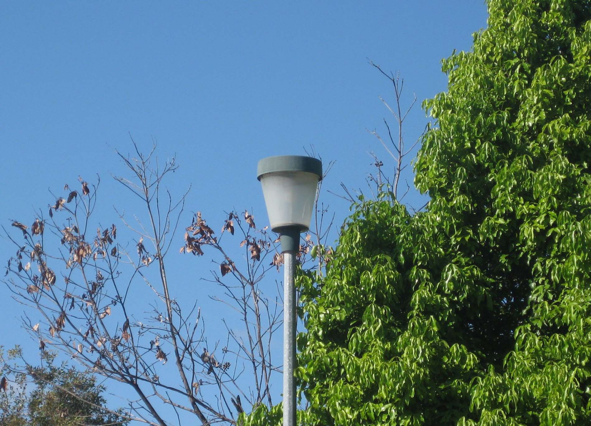 Bathurst CPTED Street Lighting Audit