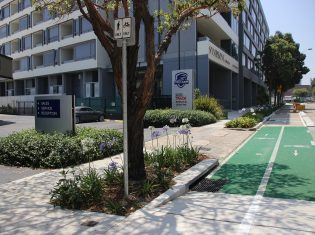 Green Square to Randwick Cycleway Design
